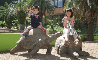 iZoo(イズー)のゾウガメとの記念撮影,静岡県,動物園,かわいい