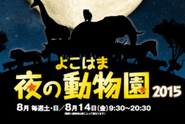 よこはま夜の動物園2015,東京,夜,水族館