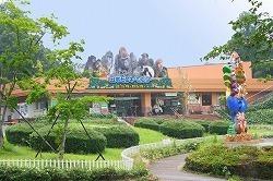 日本モンキーセンタービジターセンター,愛知,動物園,ふれあい
