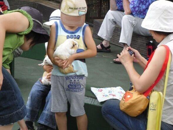 万騎が原ちびっこ動物園,神奈川県,動物園,無料