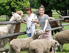マザー牧場|千葉県富津市,期間限定,親子,見学