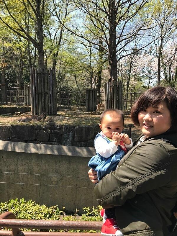 桜の木の前に立つ親子,横浜,金沢動物園,人気