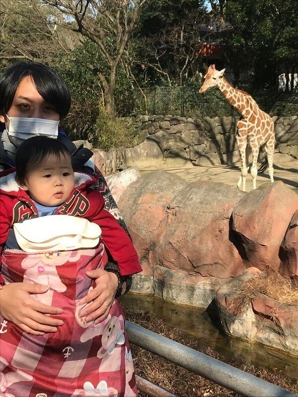 赤ちゃんきりんと赤ちゃん,横浜,金沢動物園,人気