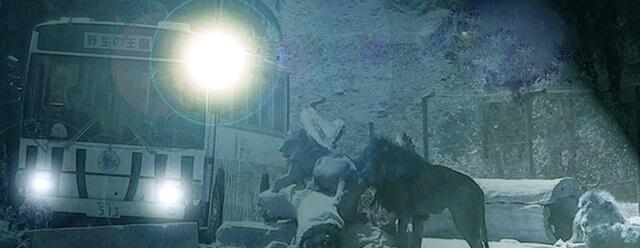 ナイトサファリ,群馬サファリパーク,割引,
