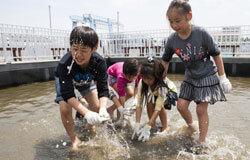 うみファーム魚とり,八景島シーパラダイス,うみファーム,海育