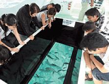 ブセナ海中公園,美ら海,水族館,体験