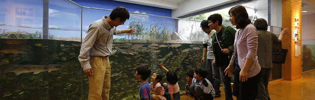 ,島根,水族館,子ども