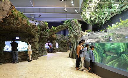エプソンアクアパーク品川アクアジャングル,エプソンアクアパーク,品川,水族館