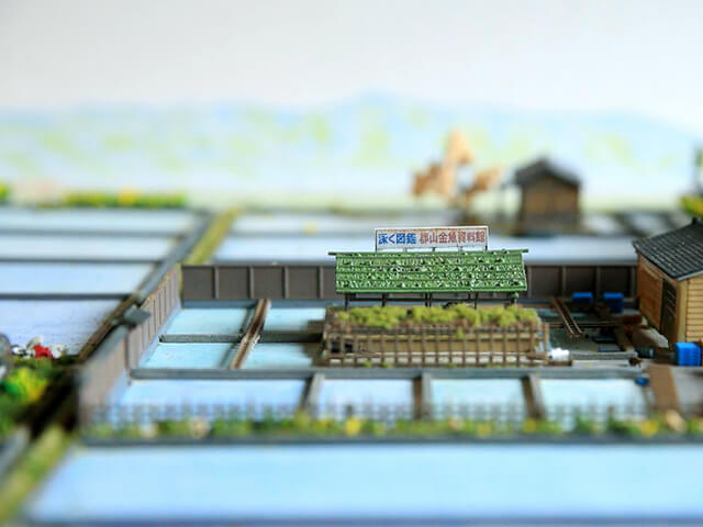 郡山金魚資料館,関西,水族館,おすすめ