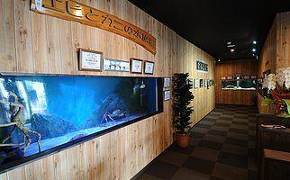 すさみ町立 エビとカニの水族館のエントランス水槽,関西,水族館,おすすめ