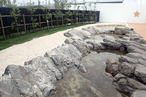 うみの杜ビーチの様子,水族館,東北,