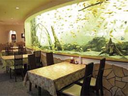 名古屋港水族館 レストラン,名古屋港水族館,イルカ,
