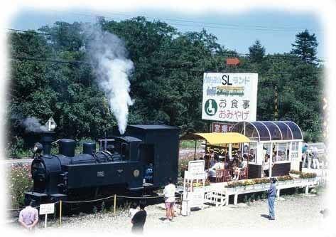 野辺山SLランド ,長野,遊園地,観光スポット