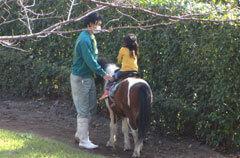 ポニー乗馬,あらかわ遊園,乗り物,子ども