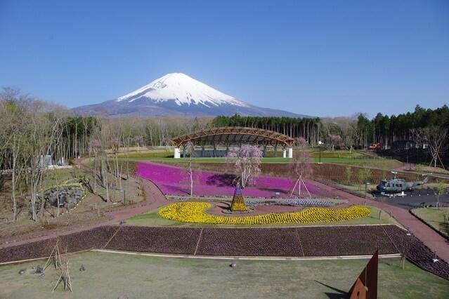 四季彩の丘,富士山樹空の森,