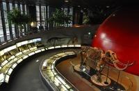 ひとはく常設展示,兵庫県立人と自然の博物館,