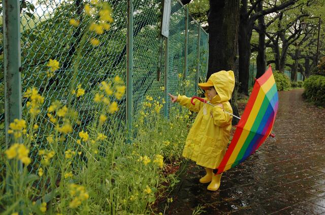 雨の日の散歩,子供,レインコート,