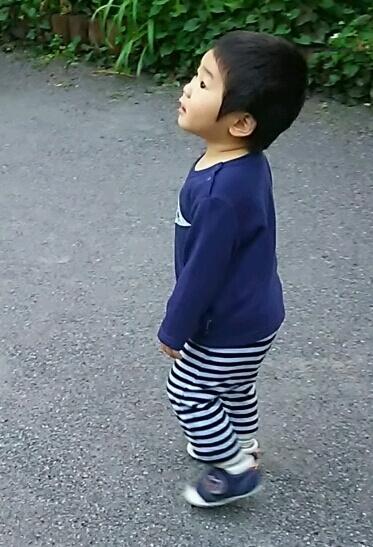 1歳の子ども,おむつ,Lサイズ,