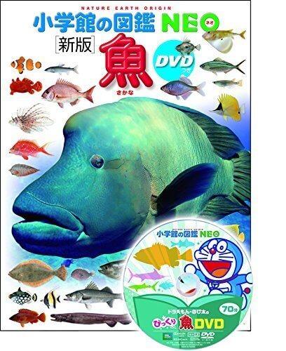 DVD付 新版 魚 (小学館の図鑑 NEO),魚,絵本,