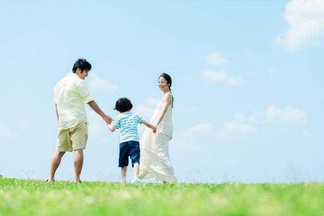 家族の写真,おすすめ,DVD,