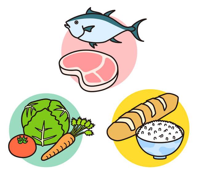 食べ物の栄養,食事マナー,