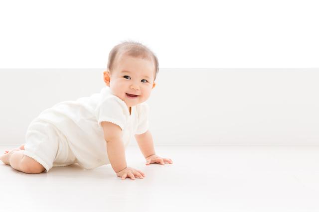 ハイハイをする赤ちゃん,赤ちゃん,おむつ,比較