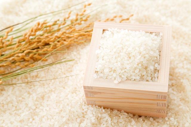 米,離乳食中期,食材,