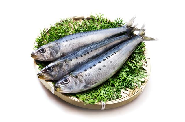 青背魚いわし,離乳食中期,食材,