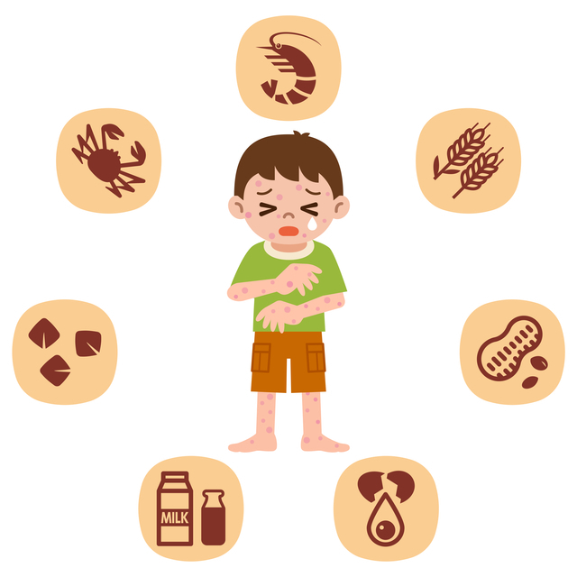 子どものアレルギー,離乳食,中期,しらす