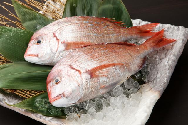 鯛,離乳食,後期,食材