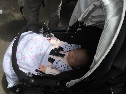 ベビーカーに乗った赤ちゃん,上野動物園,