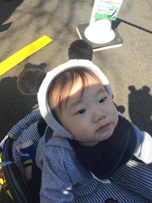 パンダを見学する赤ちゃん,上野動物園,