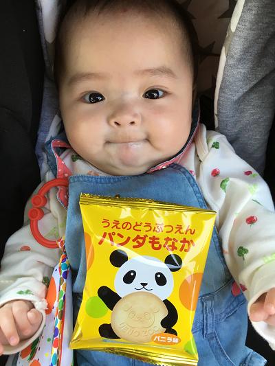 パンダもなかと赤ちゃん,上野動物園,