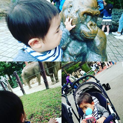 上野動物園を満喫する赤ちゃん,上野動物園,