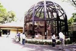 千葉市動物公園,関東,動物園,