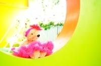 ミルフィーユの特徴,埼玉,写真,スタジオ