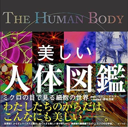 美しい人体図鑑 (一般書),