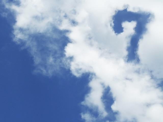 空に浮かぶ7,妊娠,25週,胎児