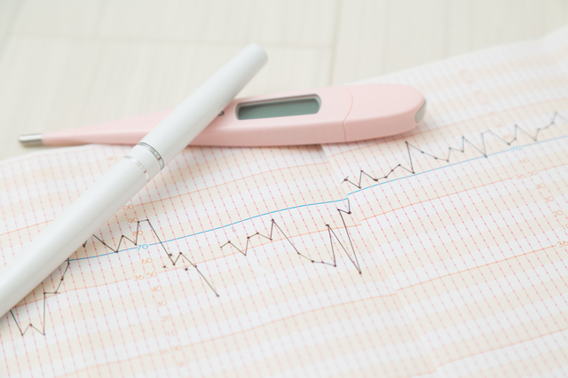 基礎体温グラフ,PMS,妊娠,