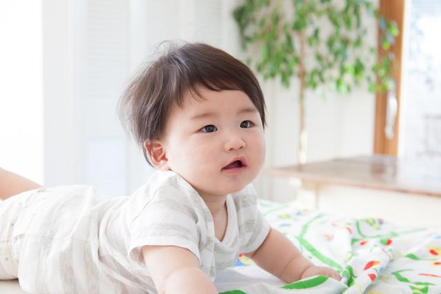 生後6ヶ月赤ちゃん,生後,6ヶ月,赤ちゃん
