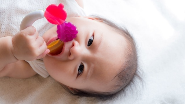 赤ちゃん噛む,生後,6ヶ月,赤ちゃん