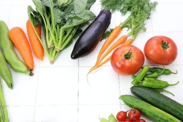 野菜の写真,妊娠初期,気をつけること,