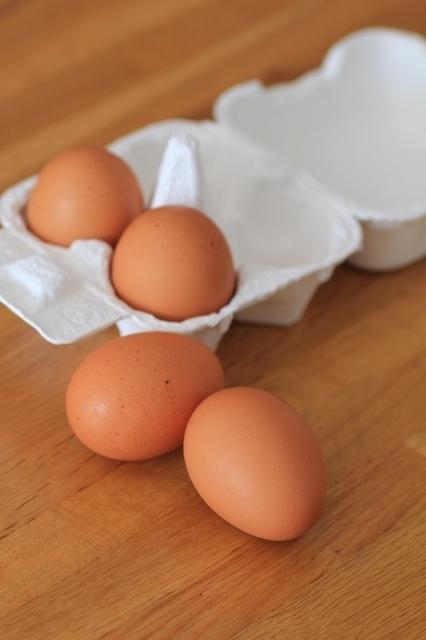 卵,離乳食,卵,