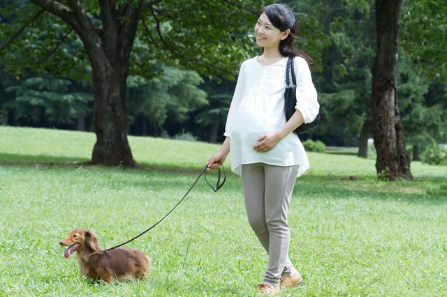 散歩する妊婦さん,妊娠,37,週