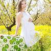 プレママからの相談:「妊婦の旅行について」,