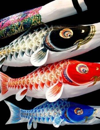 村上鯉 ベランダ用,鯉のぼり,選び方,おすすめ