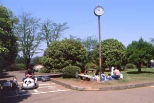 市制記念公園,千葉,アスレチック,公園