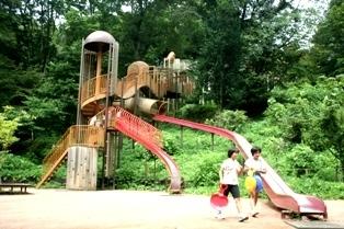 昭和の森公園,千葉,アスレチック,公園