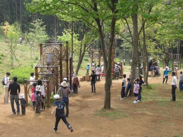 昭和の森公園 アスレチック,千葉,アスレチック,公園