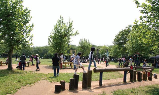 成田ゆめ牧場,千葉,アスレチック,公園
